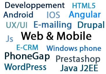 Compétences Web et Mobile